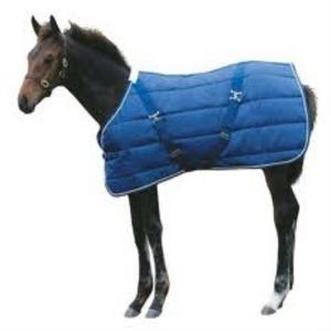 Happy Horse Medscalejasper%20foal%20rug%20(500%20x%20500)