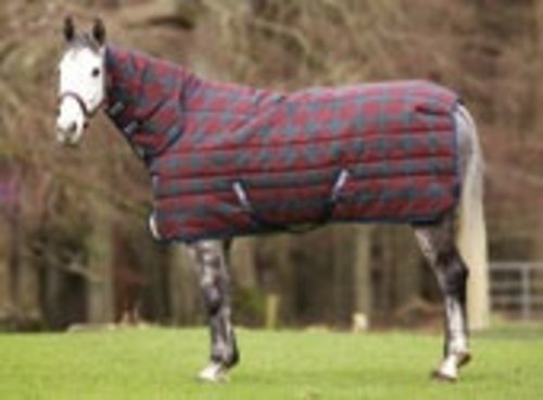 Horseware Amigo 1200D Plus Medium Turn-out Rug
