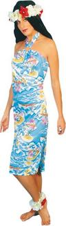 View Item Adult Hawaiian Dress Fancy Dress Costume Ladies Womens Female