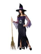 Ladies Mystical Witch Costume