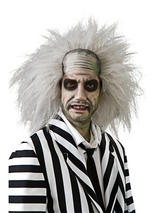 View Item Adult Beetlejuice Fancy Dress Wig Halloween Costume
