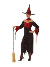 View Item Adult Hocus Pocus Witch Horror Fancy Dress Costume Ladies Womens Female