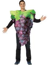 Adult's Purple Grapes Costume