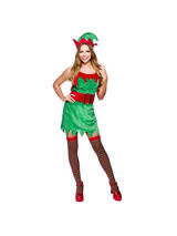 Ladies Enchanting Elf Costume