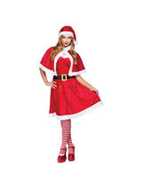 Ladies Miss Santa Dress Costume