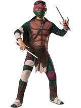 View Item Child Teenage Mutant Ninja Turtles TMNT Raphael Fancy Dress Costume Kids