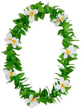 View Item Green Leaf White Flowers Hawaiian Garland Lei Tropical Hen Party Fancy Dress New