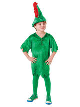 View Item Boys Kids Peter Pan Fancy Dress Costume Outfit Book Week With Hat Belt Tights