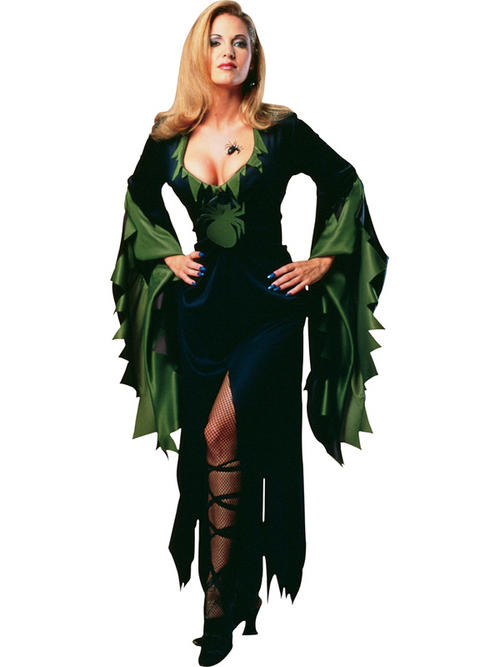 adult ladies uk 10 14 spider enchantra witch halloween fancy dress costume - Spider Witch Halloween Costume