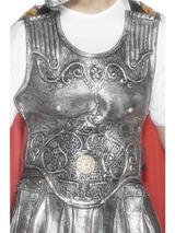 View Item Adult Roman Silver Rubber Breastplate Fancy Dress Accessory