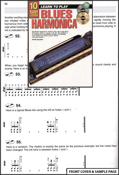 Beginner's Guide to Harps | Dusty Strings