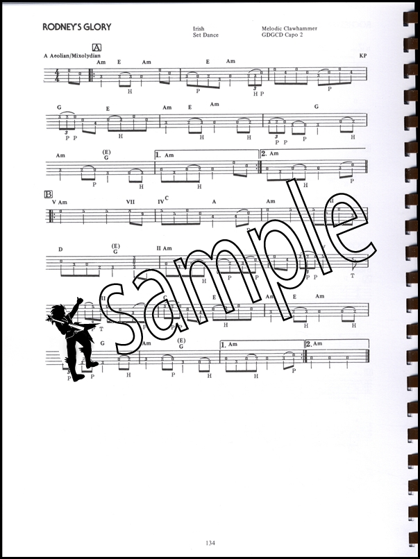 The Banjo Pickeru0026#39;s Fakebook 5-String Banjo TAB Music Book OVER 230 TUNES : eBay