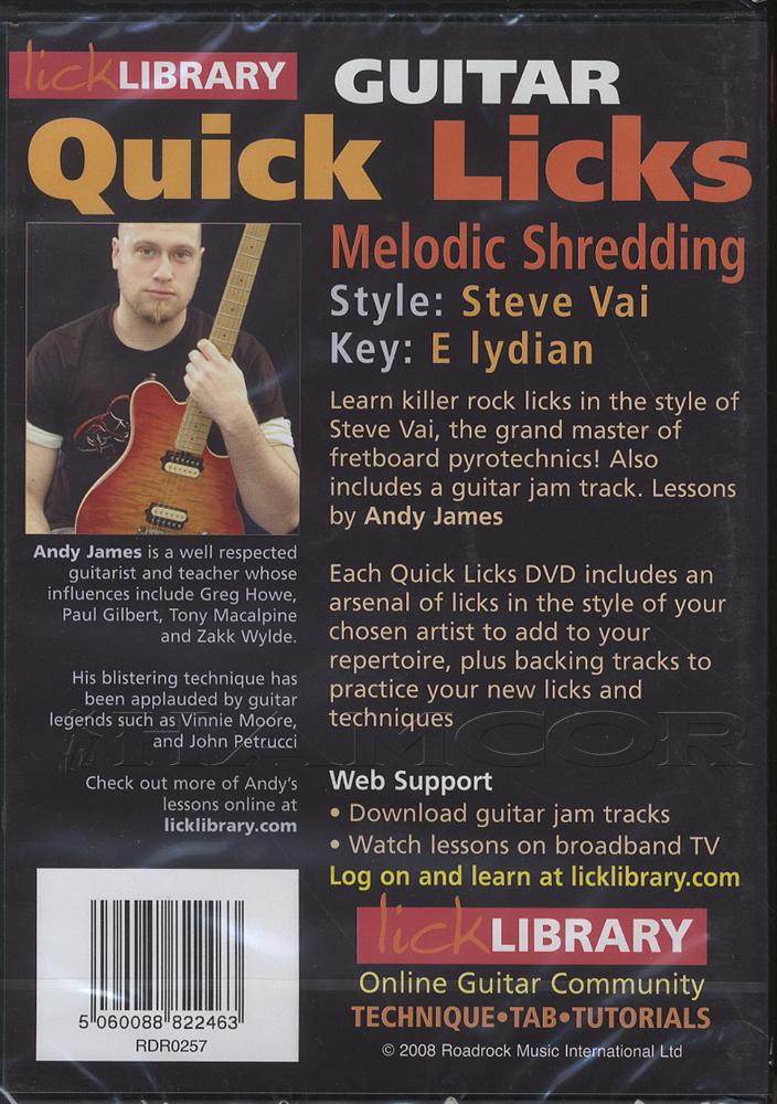 Stevie Ray Vaughn Lick 60