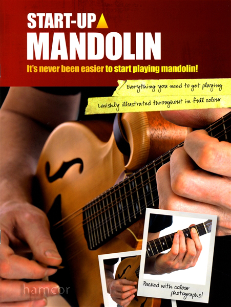 How to Play Mandolin for Beginners - takelessons.com
