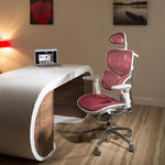 View Item Ergomomic Luxury Red Mesh Office Back Support Butterfly Exec Chair