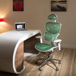View Item Ergomomic Luxury Green Mesh Office Back Support Butterfly Exec Chair
