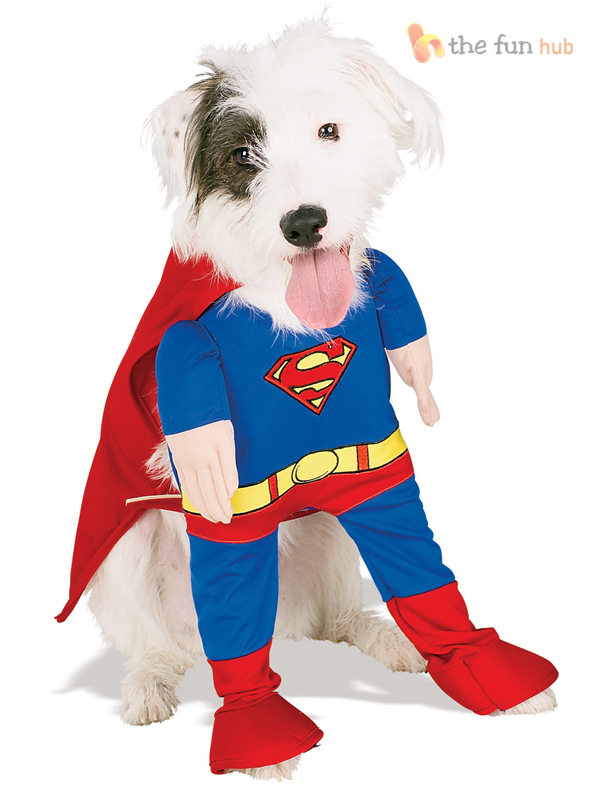 Fancy-Dress-Costume-For-Pet-Dog-Yoda-Superman-Wonderwoman-Halloween-Outfit