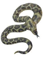 Plastic Snake Prop
