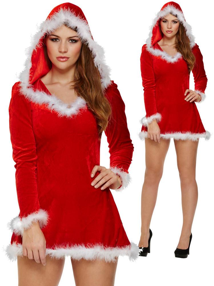 Ladies Sexy Santa Costume