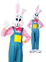 Boy's Country Rabbit Costume
