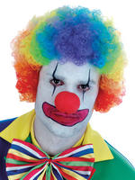 Adults Rainbow Clown Wig