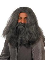 Men's Wizard Wig & Beard