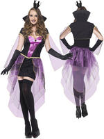 Ladies Fever Mirror Mistress Costume
