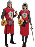 Ladies Lady Knight Costume