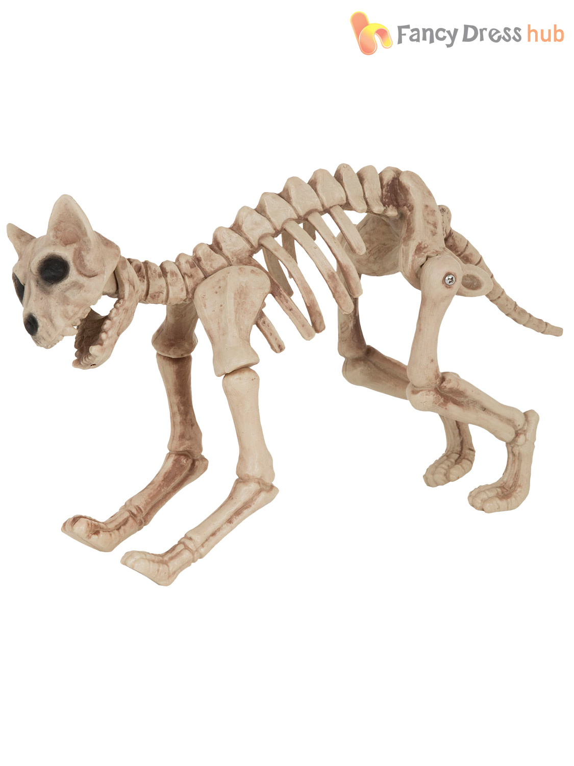 Halloween Skeleton Cat Raven Bird Prop Animal Bones Party Shop ...