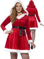 Ladies Curves Miss Santa Costume