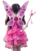 Girl's Sugar Plum Fairy Set