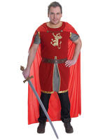 Men's Lion Heart Costume