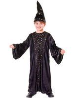 Boy's Deluxe Wizard Costume