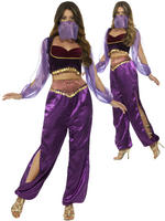 Ladies Arabian Princess Costume