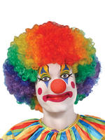 Adults Clown Wig