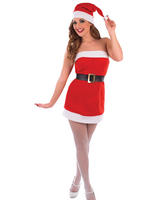Ladies Christmas Cracker Costume