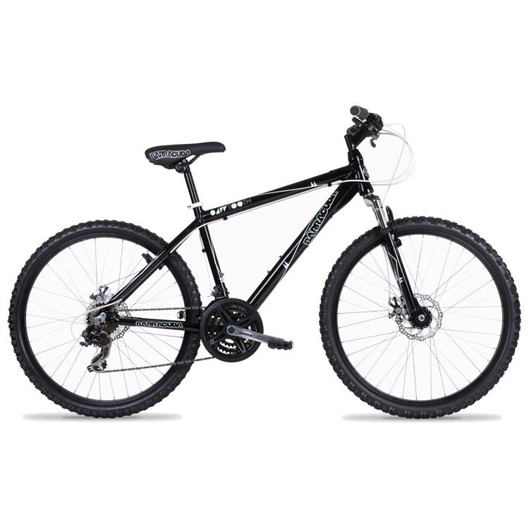Bikes Ebay to biking need advice on