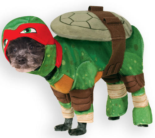 Teenage Mutant Ninja Turtle Raphael Dog Fancy Dress TMNT Superhero Pet Costume