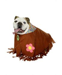 View Item Hippie Dog Costume