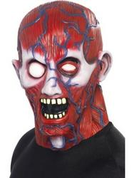 View Item Adult's Anatomy Man Halloween Mask
