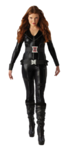 View Item Ladies Black Widow Fancy Dress Costume