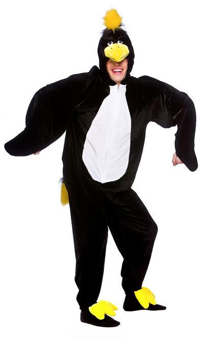 Blackbird Costume