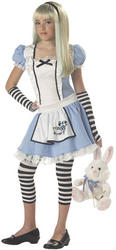 View Item Alice in Wonderland Teen Costume