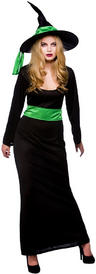 View Item Wicked Witch Costume