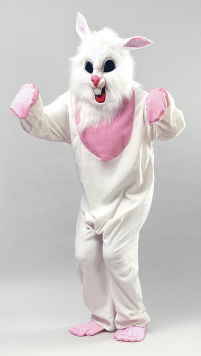 View Item Bunny Rabbit Costume