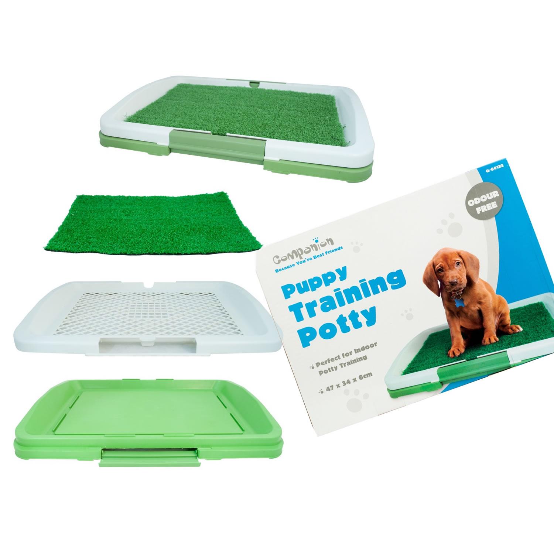 Puppy house training litter box 101