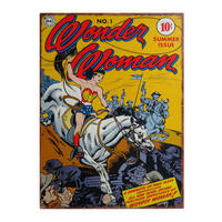 Wonder Woman Lasso Large Steel Sign