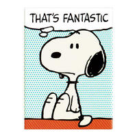 "Peanuts ""That's Fantastic"" Fridge Magnet"