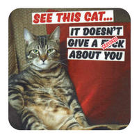 See This Cat - It Doesn't Give A F*ck About You Coaster