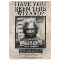 "Harry Potter ""Wanted Have You Seen This Wizard"" A3 Large Steel Sign"